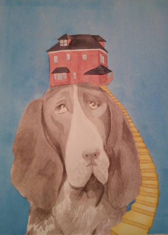 dove c'è un cane c'è una casa